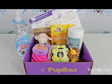 PupBox Puppy Subscription Box Review (2018)