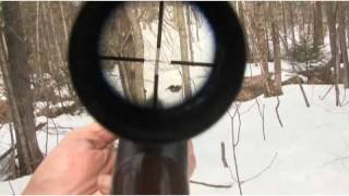How to Understand Hunting Regulations   Hunting
