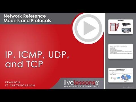 IP, ICMP, UDP & TCP