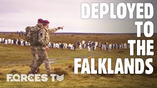 Guardians Of The South Atlantic: UK Forces In The Falklands | Forces TV