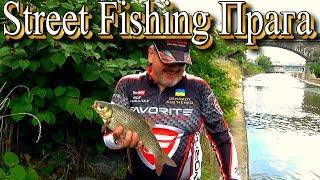 Рыбалка в прага
