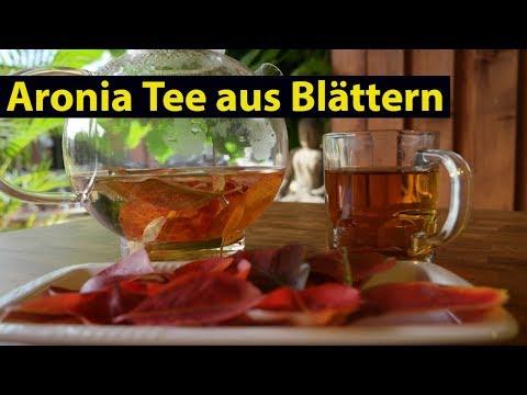 ✅ Aronia Tee aus Aronia Blättern selber herstellen