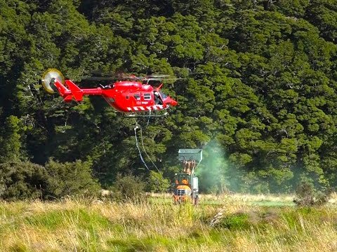 Rescue Helicopters Used to Poison Deer - Tourists Speak Out