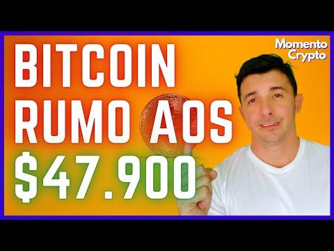 Bitcoin vs dogecoin