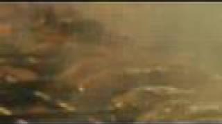 Cinemalaya's NAMETS (60s teaser)