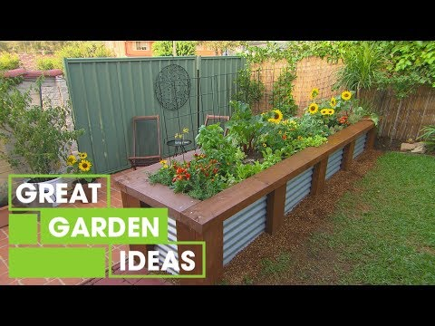 Getting Started with a Veggie Patch | Gardening | Great Home Ideas