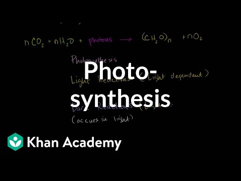 Photosynthesis (video) Khan Academy
