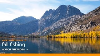 VIDEO: Fall Fishing Tips by Pro Guide Doug Rodricks