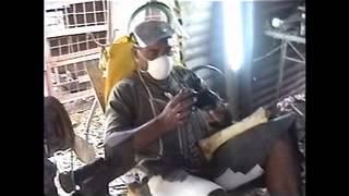 preview picture of video 'Boice el artesano de los huesos.mp4'