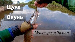 Рыбалка на реке шерна апрель май