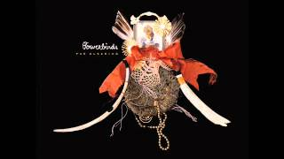 Bowerbirds-Now We Hurry On