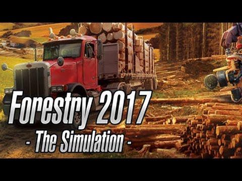 Forstwirtschaft 2017: Die Simulation