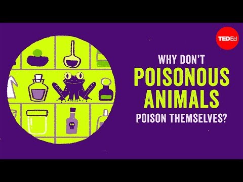 Can Toxic Animals Poison Themselves?