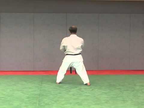 15. Seishan Wado Ryu