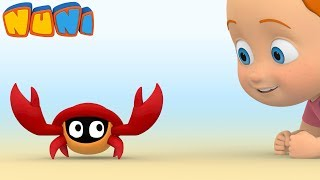 NuNi – Animation for toddlers | Getting lost