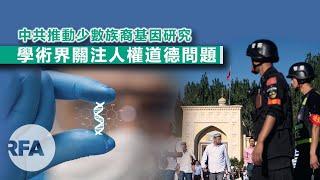 粵語新聞報道(12-06-2019)| 中國駐瑞大使威脅貿易制裁;中國逆權大狀杯葛世界律師大會