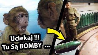 Małpy, BOMBY i Wyrwane Włosy - Oto Gibraltar !!! (Vlog #237)