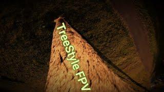 TreeStyle Flow FPV 6s Nazgul - 4k