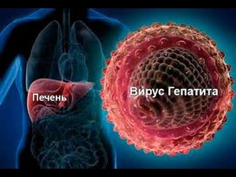 Ускоренное лечение гепатита с