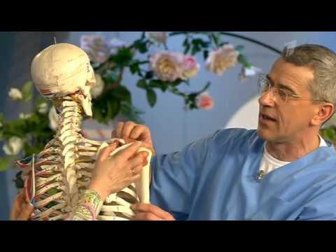 Вдали от цивилизации. Что делать при травме вращательной манжеты плеча