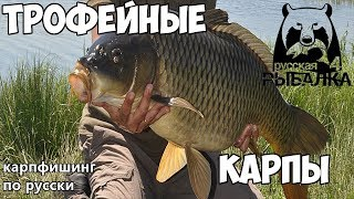 Руская рыбалка на карпа