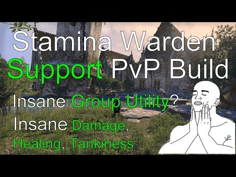Guide on How to play Stamina Warden in PvP [Gameplay Commentary