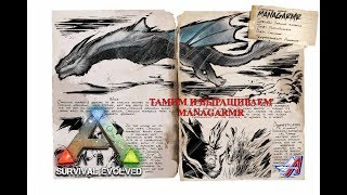 ARK: Survival Evolved: ТАМИМ И ВЫРАЩИВАЕМ MANAGARMR КАРТА Extinction