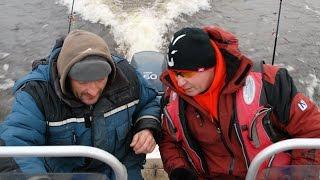 Как ловится рыба на волге в декабре