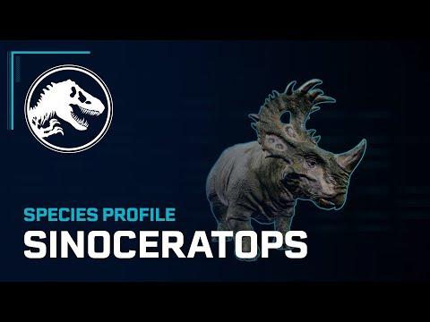 Species Profile - Sinoceratops thumbnail