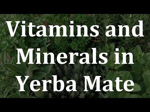 Video Vitamins and Minerals in Yerba Mate - Health Benefits of Yerba Mate