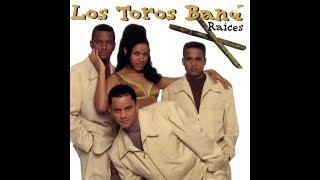 Mix De Los Toros Band