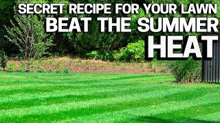 Protect your Lawn From Summer Heat & Stress with my Secret Receipe
