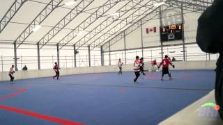 2014 Weekend of Champs Ball Hockey Highlights - Long Version
