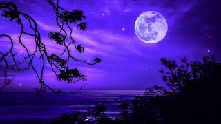 Deep Sleep Meditation Healing | Sleep Music 528Hz | Miracle Healing Frequency | Positive Energy