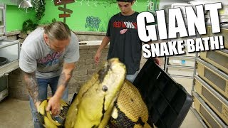 GIVING MY GIANT SNAKE A BATH!!! | BRIAN BARCZYK