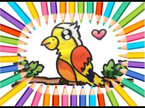 Cara Menggambar Burung Kaka Tua How To Draw Parrot смотреть