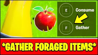 GATHER or CONSUME FORAGED ITEMS at The Orchard LOCATION (Fortnite Season 3 Week 2 Challenges)