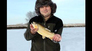 """Зимняя рыбалка на форель. Форель со льда.""""Рахат Коль"""""""