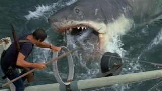 Jaws (1975 Film) - Facts