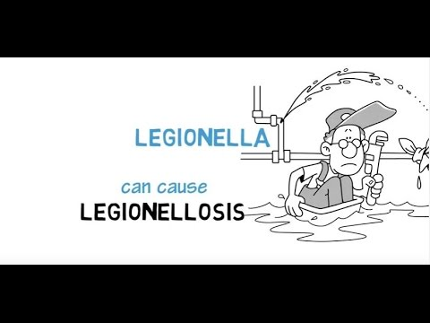 Legionellosis: Making Building Water Systems Safer through Regulation