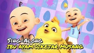 Lirik lagu Upin & Ipin - Ibu Ayam Dikejar Musang, Aduh Kasihan