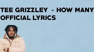 Tee Grizzley   How Many (Official Lyrics)