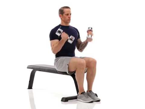 Seated Dumbbell Twist Curl