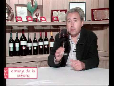 Elegir la copa para degustar un vino