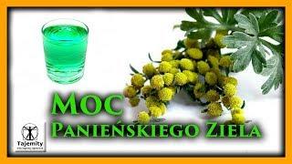 Moc Pańskiego Ziela.Wzmianki o Pańskim zielu  pochodzą z około 1500 roku przed naszą erą.