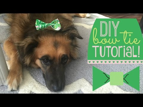 DIY Dog Bow Tie Tutorial