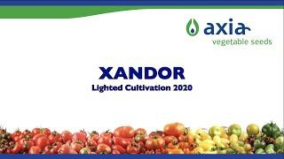XANDOR 2020