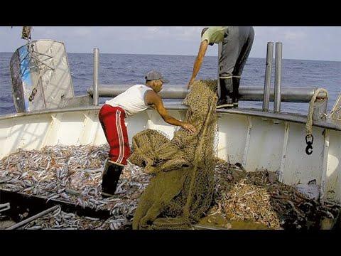 Pesca di mare