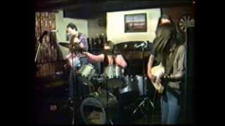 Old Wild Men - Louisiana Blues (Cover) Live in Chepstow (1983)
