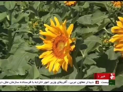 Iran West Azerbaijan province, Khoy coun